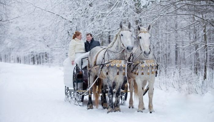 Хаски, олени и лошади будут катать посетителей восьми парков Москвы 72971007_o0607r